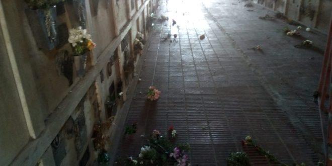 Vandalismo en el Cementerio Municipal